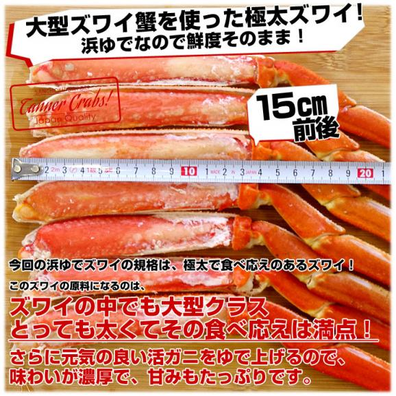 送料無料 北海道加工 活締め極上本ずわい蟹 浜ゆで極上品 カット済 合計3キロ (超盛1.5キロ×2箱) ズワイガニ03