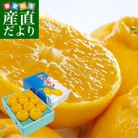 佐賀県より産地直送 JAからつ デコポン 3.5キロ化粧箱(8玉から12玉入り) 産直だより 唐津 でこぽん 送料無料 柑橘 みかん オレンジ