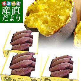 茨城県より産地直送 JAなめがた さつまいも「紅まさり(べにまさり)」 SからSSサイズ 約1キロ×3箱セット 送料無料 さつま芋 サツマイモ 薩摩芋