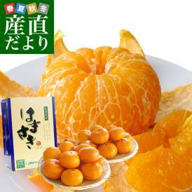 佐賀県より産地直送 JAからつ はまさき ご家庭用 ちょっと訳あり LからSサイズ 約2.5キロ (12から18玉前後) 唐津 浜崎 柑橘 オレンジ 送料無料