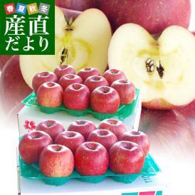 たっぷり2箱セット!りんごのプロが味優先で選んだ美味りんご!