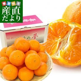 長崎県より産地直送 JA長崎せいひ 津之輝(つのかがやき) 3LからLサイズ 優品 2.5キロ (10玉から25玉) 柑橘 オレンジ 津の輝 西彼 伊木力 大西海