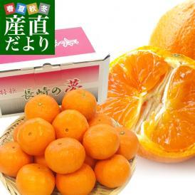 長崎県より産地直送 JA長崎せいひ 津之輝(つのかがやき) 3Lから2Lサイズ 秀品 2.5キロ (15玉から20玉) 柑橘 オレンジ 津の輝 西彼 伊木力 大西海 送料無料