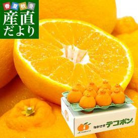 長崎県より産地直送 JA長崎せいひ 露地デコポン 優品  4LからLサイズ 3キロ (8玉から14玉) 送料無料 3月以降発送商品  柑橘 かんきつ