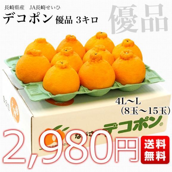 長崎県より産地直送 JA長崎せいひ 露地デコポン 優品  4LからLサイズ 3キロ (8玉から15玉) 送料無料 柑橘 かんきつ03