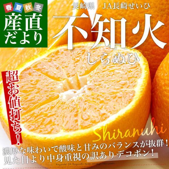 長崎県より産地直送 JA長崎せいひ 不知火 (しらぬひ) 優品 4LからLサイズ 5キロ (15玉から24玉) 送料無料 柑橘 かんきつ02