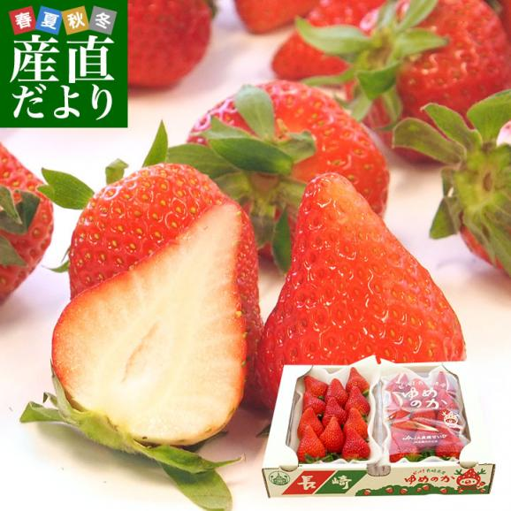 長崎県より産地直送 JA長崎せいひ 期待の新品種いちご ゆめのか 1箱 540g (270g×2パック 入り) 合計20粒から32粒入り 送料無料 産直だより 苺 イチゴ01