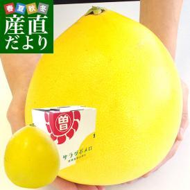 柑橘類の中で最大級の果実!たっぷり詰まった果肉がとっても美味しいです!
