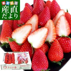 高い「甘み」とフルーティーな「香り」が楽しめる高級感漂うプレミアムいちご