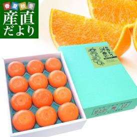 広島県産 JA三原せとだ「瀬戸田のハウスせとか」 3キロ 青秀以上 Lから3Lサイズ(10玉から15玉)柑橘 かんきつ オレンジ 市場スポット 送料無料