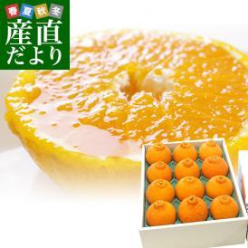 愛媛県より産地直送 JAにしうわ デコポン 秀品 3LからLサイズ 3キロ(10玉から15玉前後)でこぽん 柑橘 オレンジ 西宇和 八幡浜