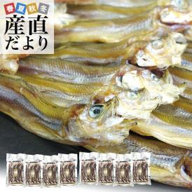 送料無料 北海道から直送 北海道産 高級珍味 本乾ししゃも 8袋セット(25g×8P) 柳葉魚 シシャモ