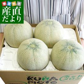 送料無料 熊本県産 JA熊本うき アンデスメロン 4Lから3L 5キロ箱(3から4玉) 市場スポット