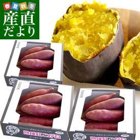 送料無料 茨城県より産地直送 JAなめがたしおさい さつまいも「熟成紅こがね」 SからSSサイズ 約1キロ(5本から10本)3箱セット