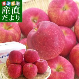 青森県より産地直送 JAつがる弘前 ジョナゴールド CA貯蔵品 約3キロ(9玉から13玉)送料無料 りんご じょなごーるど