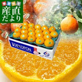 送料無料 熊本県から産地直送 JAあまくさ 貯蔵デコポン 2LからL 5キロ(20玉から24玉) Pプラス鮮度保持袋入り