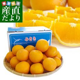送料無料 愛媛県より産地直送 JAにしうわ三崎共選 清見オレンジ 優品以上 LからMサイズ 2.5キロ(12から15玉前後)