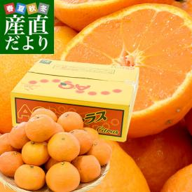 送料無料 JAありだAQ中央共選 カラマンダリン 秀品 3Lから2Lサイズ 4キロ(20から25玉前後) 柑橘 かんきつ 蜜柑 みかん 市場スポット