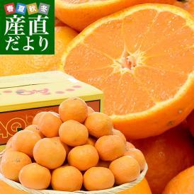 送料無料 JAありだAQ中央共選 カラマンダリン 秀品 LからMサイズ 5キロ(35から45玉前後) 柑橘 かんきつ 蜜柑 みかん 市場スポット
