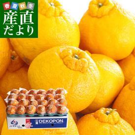送料無料 熊本県産 JA熊本果実連 貯蔵デコポン 2LからL 5キロ(20玉から24玉) Pプラス鮮度保持袋入り 市場スポット