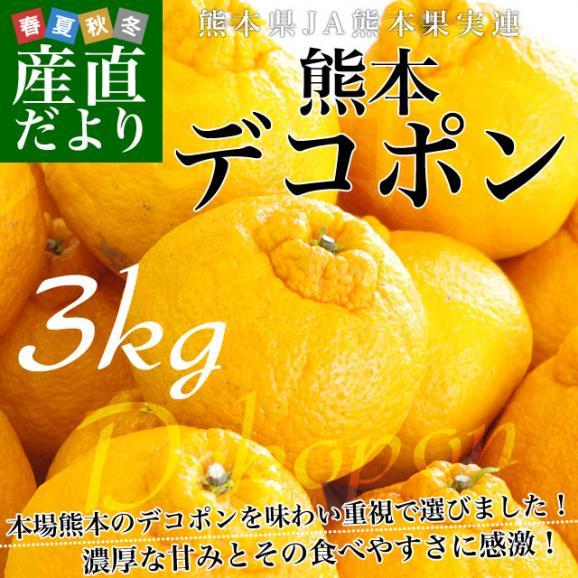 送料無料 熊本県産 JA熊本果実連 貯蔵デコポン 2LからL 3キロ(12玉から15玉) Pプラス鮮度保持袋入り 市場スポット02