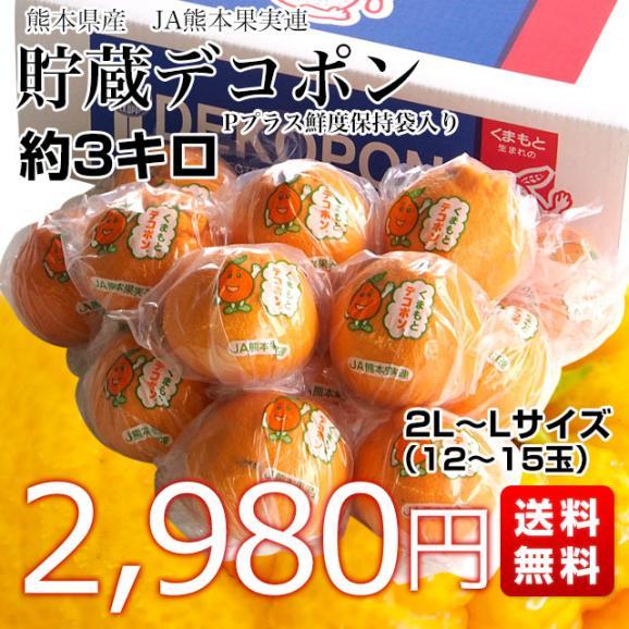送料無料 熊本県産 JA熊本果実連 貯蔵デコポン 2LからL 3キロ(12玉から15玉) Pプラス鮮度保持袋入り 市場スポット03