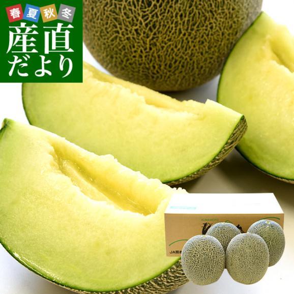 熊本県産 JAやつしろ他 肥後グリーンメロン 優品以上 超盛り 8キロ (約2キロ×4玉) めろん 市場スポット 送料無料01