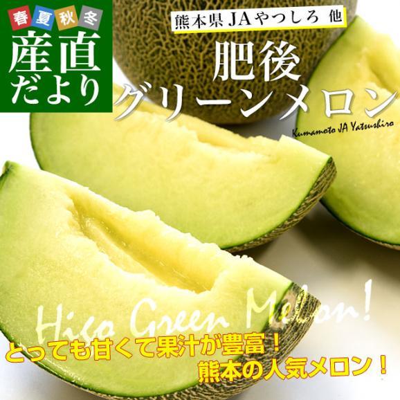 熊本県産 JAやつしろ他 肥後グリーンメロン 優品以上 超盛り 8キロ (約2キロ×4玉) めろん 市場スポット 送料無料02