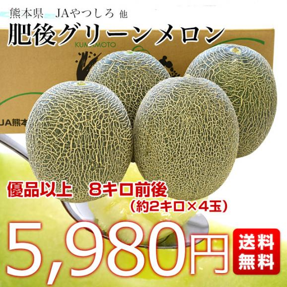 熊本県産 JAやつしろ他 肥後グリーンメロン 優品以上 超盛り 8キロ (約2キロ×4玉) めろん 市場スポット 送料無料03