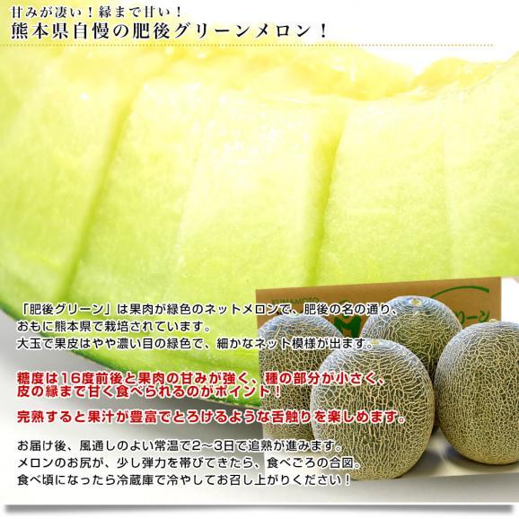 熊本県産 JAやつしろ他 肥後グリーンメロン 優品以上 超盛り 8キロ (約2キロ×4玉) めろん 市場スポット 送料無料04