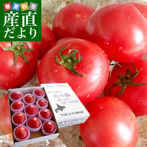 送料無料 北海道より産地直送 下川町のスーパーフルーツトマト <北の極> 秀品 約800g LからS(8から15玉)01