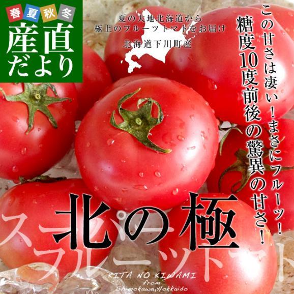 送料無料 北海道より産地直送 下川町のスーパーフルーツトマト <北の極> 秀品 約800g LからS(8から15玉)02