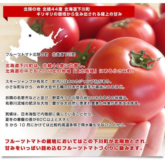 送料無料 北海道より産地直送 下川町のスーパーフルーツトマト <北の極> 秀品 約800g LからS(8から15玉)04