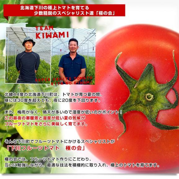 送料無料 北海道より産地直送 下川町のスーパーフルーツトマト <北の極> 秀品 約800g LからS(8から15玉)05