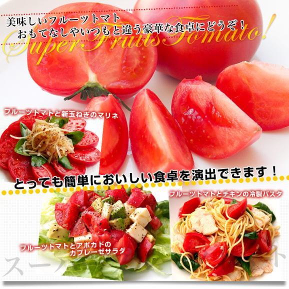 送料無料 北海道より産地直送 下川町のスーパーフルーツトマト <北の極> 秀品 約800g LからS(8から15玉)06