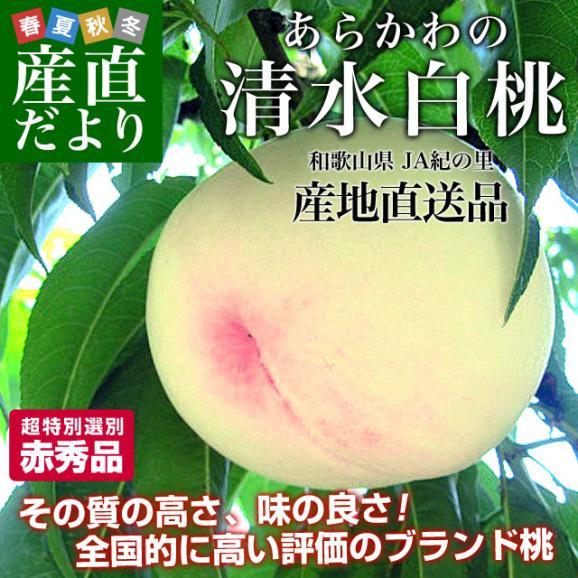 和歌山県より産地直送 JA紀の里 あら川の桃 清水白桃 赤秀品 1.8キロ (6玉から8玉) 送料無料 桃 もも02