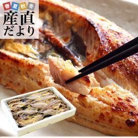 送料無料 北海道産 真ホッケ開き味噌漬け 3キロ(250g×12枚入) ほっけ ホッケ みそ漬け