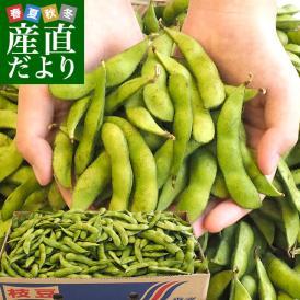 香川県より産地直送 JA香川県 食感がよい大粒の枝豆 たっぷり2キロ 送料無料 えだまめ エダマメ ※クール便