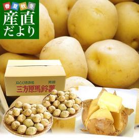 送料無料 静岡県産 JAとぴあ浜松 三方原馬鈴薯(男爵) Sサイズ 10キロ ばれいしょ じゃがいも ジャガイモ ※市場スポット