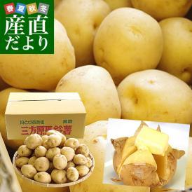 送料無料 静岡県産 JAとぴあ浜松 三方原馬鈴薯(男爵) Mサイズ 10キロ ばれいしょ じゃがいも ジャガイモ ※市場スポット