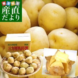 送料無料 静岡県産 JAとぴあ浜松 三方原馬鈴薯(男爵) Lサイズ 10キロ ばれいしょ じゃがいも ジャガイモ ※市場スポット