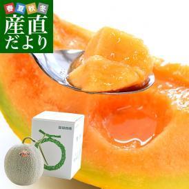 最高級の北海道メロンを産地直送でお届けします。農協さんの規格に合格した共撰品夕張メロン!