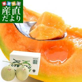 北海道より産地直送 JA夕張市 夕張メロン 良品 2玉(1.3キロ×2玉) 送料無料ゆうばり 夕張キング めろん