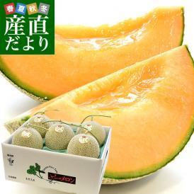 北海道より産地直送 富良野メロン 赤肉 約8キロ (大玉5玉から6玉) (1玉1.3キロから1.6キロ) ふらのめろん レッド 送料無料