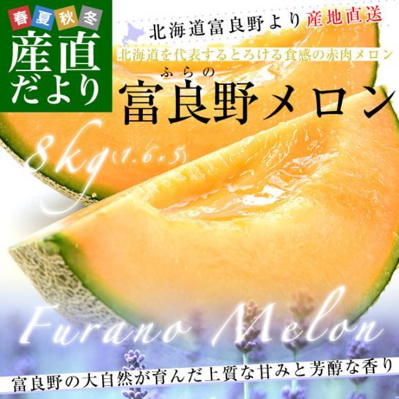 北海道より産地直送 富良野メロン 赤肉 約8キロ (大玉5玉から6玉) (1玉1.3キロから1.6キロ) ふらのめろん レッド 送料無料02