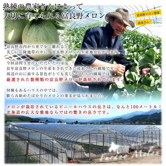 北海道より産地直送 富良野メロン 赤肉 約8キロ (大玉5玉から6玉) (1玉1.3キロから1.6キロ) ふらのめろん レッド 送料無料06