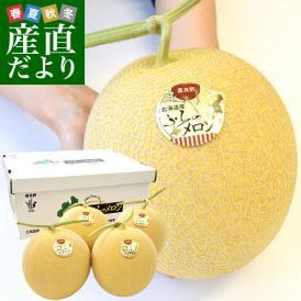送料無料 北海道から産地直送 富良野メロン 黄美香 8キロ (超大玉2キロ×4玉) メロン めろん