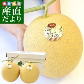 送料無料 北海道から産地直送 富良野メロン 黄美香 超大玉2キロ×2玉 メロン めろん