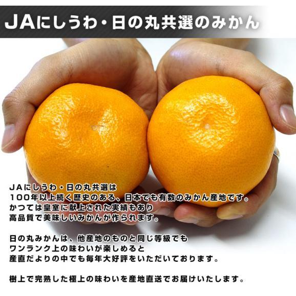 愛媛県より産地直送 JAにしうわ 日の丸みかん 千両 LからSサイズ 3キロ(24玉から36玉) 送料無料 蜜柑 ミカン04