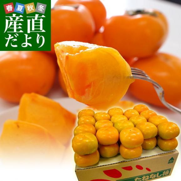 和歌山県より産地直送 JA紀の里 たねなし柿 2LからLサイズ 7.5キロ(32玉から36玉)カキ 刀根柿 平核無柿 とねがき ひらたねなしがき01